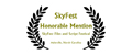Honorable Mention, Skyfest